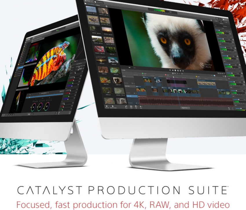 Catalyst Production Suite by Sony Creative Software